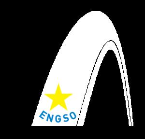 The European Sports NGO